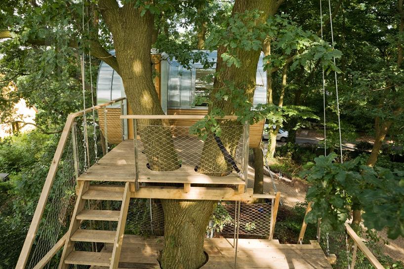 baumraum-djuren-auswahl-treehouse