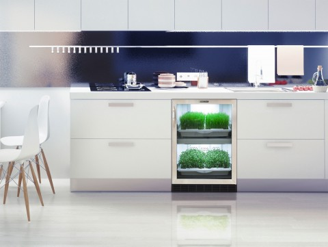 urban-cultivator-indoor-garden-herbs-food